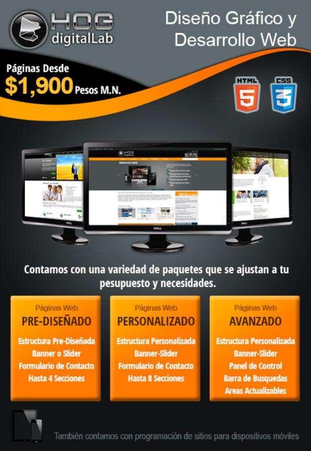 Diseño de páginas web profesionales trabajo garantizado