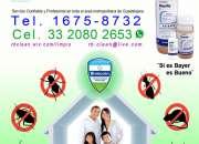 Fumigacion profesional GDL. tel. 1675-8732