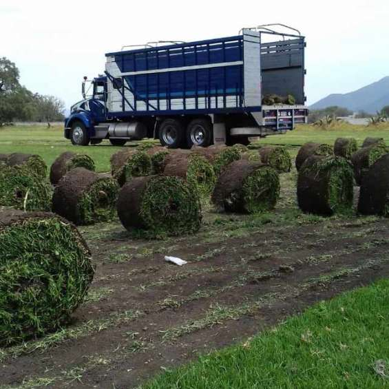 Jardineros xochimilco
