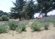 Vendo terreno cerca del Poblado San Felipe Neri