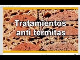 Fumigaciones en tijuana contra termitas