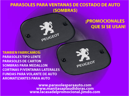 Cortinas personalizadas para autos